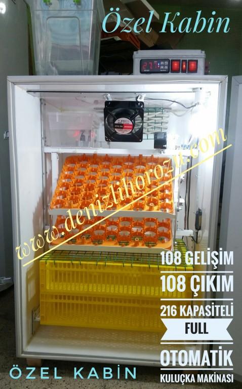 108 Gelişim + 108 Çıkım 216 lık Full Otomatik Kuluçka Makinesi 11