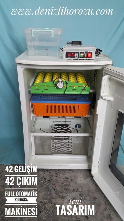 42 gelişim 42 çıkım Full otomatik Kuluçka Makinesi 18-2