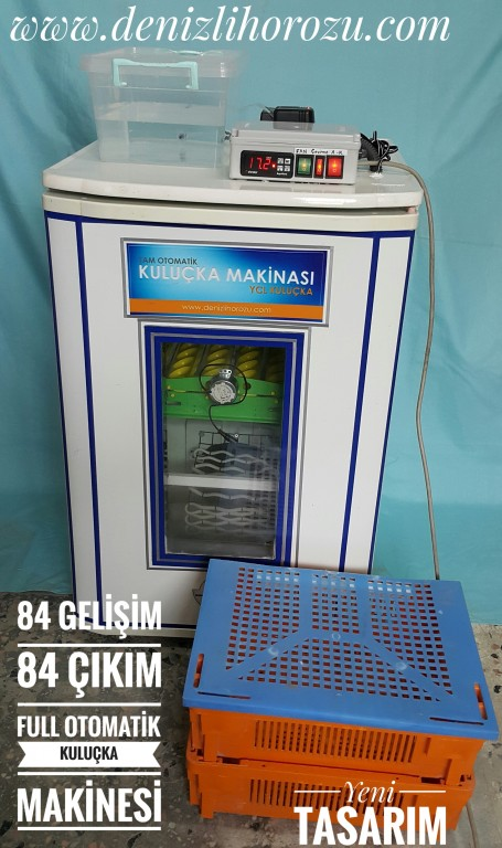 84 gelişim 84 çıkım Full otomatik Kuluçka Makinesi 18-3