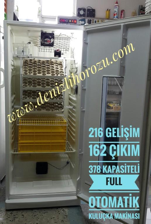 162 Gelişim + 162 Çıkım 324 lük Full Otomatik Kuluçka Makinesi 14